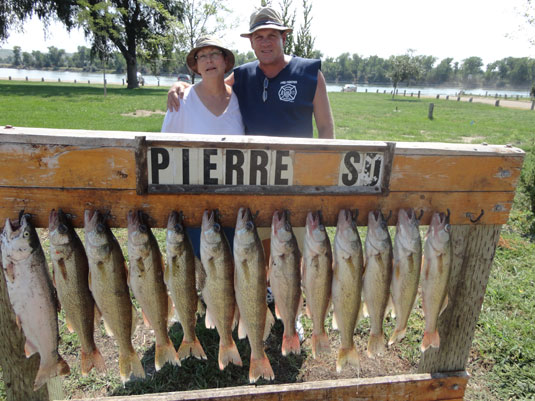 Lakes Oahe/Sharpe Pierre area fishing report for Aug11th and 12th 2013