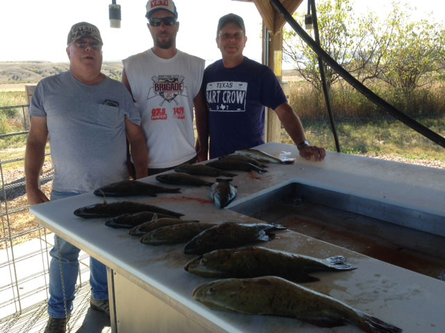 FISHING REPORT LAKES OAHE/SHARPE PIERRE AREA FOR LAST OF AUGUST AND FIRST WEEK OF SEPTEMBER