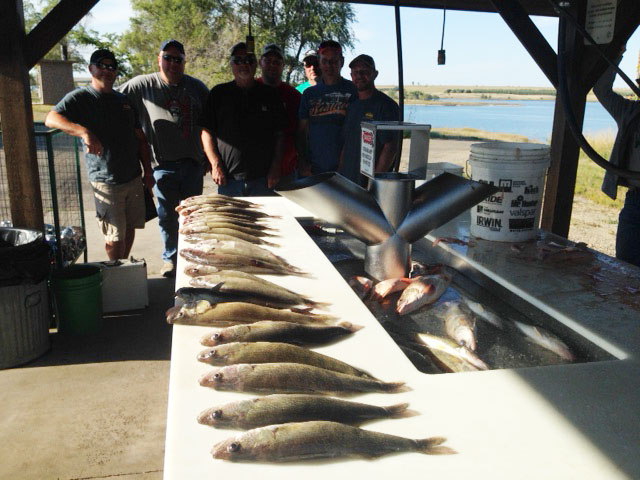 FISHING REPORT LAKES OAHE/SHARPE PIERRE AREA FOR SEPTEMBER 11TH THRU THE 20TH 2017